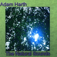 Adam Harth | The Natural Sounds