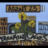 Agent 23 | Breakin Cages