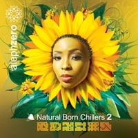 Various Artists | Natural Born Chillers 2