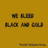 All American Tailgaters | We Bleed Black and Gold: Vandy Tailgate Song