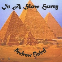 Andrew Baird | In A Slow Hurry