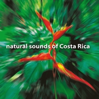 Andrew Roth | Natural Sounds of Costa Rica