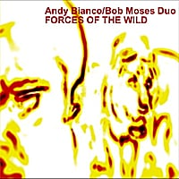 Andy  Bianco & Bob Moses Duo | Forces of the Wild