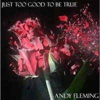 Andy Fleming | Just Too Good to Be True