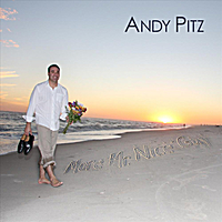 Andy Pitz | More Mr. Nice Guy