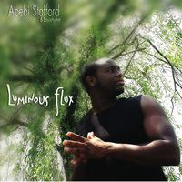 Abebi Stafford & Bayorhythm | Luminous Flux