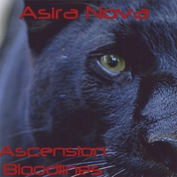 Asira Nova | Ascension Bloodlines
