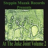 Various Artists | At the Junk Joint Volume 2