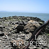 Audio Terrorist | Experimental Behaviour