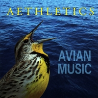 Avian Music | Aethletics