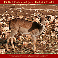 J.S. Bach Orchestra, Julius Frederick Rinaldi & Walter Rinaldi | J.S. Bach: Violin Concerto; Jesu, Joy of Man's Desiring; Air On the G String; the Well - Tempered Clavier - Vivaldi: the Four Seasons; Cello Concerto - Pachelbel: Canon in D Major - Paradisi: Toccata - Vol. VIII