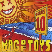 Bag of Toys | Access 10