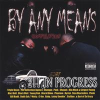 Various Artists/Triple Beam, T Nutty, Mac Mall, BA of 3xKrazy, Blackmail, Dubb-Sak, and ma | By Any Means 211 In Progess
