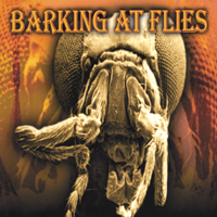 Barking at flies | Barking at flies