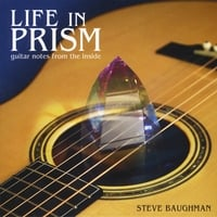 Steve Baughman | Life in Prism: Guitar Notes From the Inside
