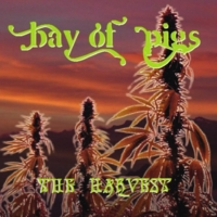 Bay of Pigs | The Harvest