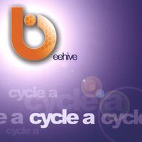 Beehive | Cycle A