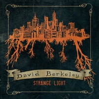 David Berkeley | Strange Light