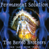 The Bernd Brothers | Permanent Solution