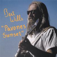 Bert Wills | Pavones Sunset