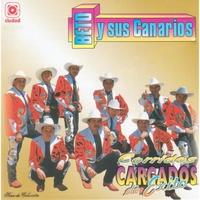 beto y sus canarios mp3 s