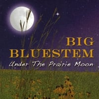 The Big Bluestem Stringband | Under the Prairie Moon