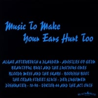 Various Artists | Music To Make Your Ears Hurt Too!