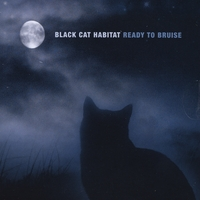 Black Cat Habitat | Ready to Bruise