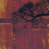 The Black Lillies | Whiskey Angel