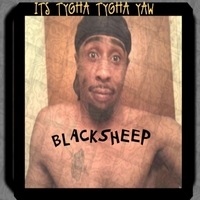 Tygha Tygha | Blacksheep