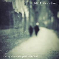 Black Swan Lane | Staring Down the Path of Sound
