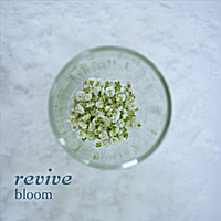Bloom | Revive