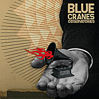Blue Cranes | Observatories