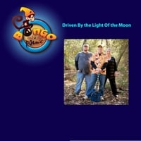 Bongo and the Point | Driven By the Light of the Moon