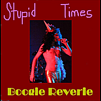 Boogie Reverie | Stupid Times