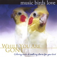 Bradley Joseph | Music Birds Love: While You Are Gone