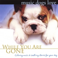 Bradley Joseph | Music Dogs Love: While You Are Gone