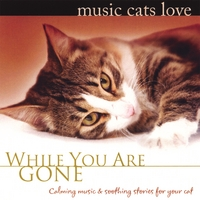 Bradley Joseph | Music Cats Love: While You Are Gone
