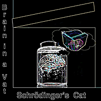 Brain in a Vat | Schrodinger's Cat