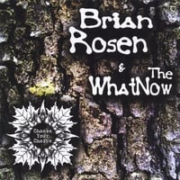 Brian Rosen & the Whatnow | Choose Your Choice