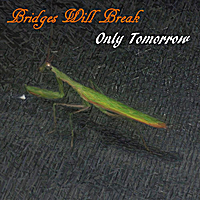 Bridges Will Break | Only Tomorrow