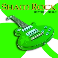 Beatnik Turtle | Sham Rock