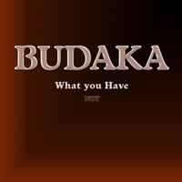 Budaka | What You Have Not