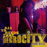 Burnt Sugar the Arkestra Chamber | All Ya Needs That Negrocity