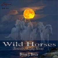 Byron J Bryce | Wild Horses (Beneath a Raging Moon)