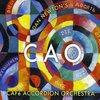 Cafe Accordion Orchestra: CAO 10