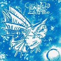 Bildresultat för Caravela Escarlate Rascunho