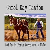 Carol Kay Lawton | God Is in Forty Acres and a Mule