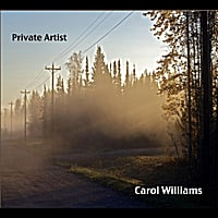 Carol Williams | Private Artist:  Commentaries On Life