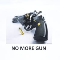 Castle | No More Gun